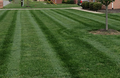 Lawn Maintenance  | Artscapes by Design, LLC