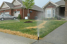 Irrigation  | Artscapes by Design, LLC